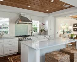 extraordinary tropical kitchen design fancy kitchen design ideas