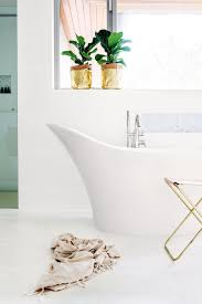 bathroom design fabulous bath plant griselinia plants good for