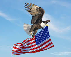 Flags American Eagle Flying American Flag By Xybutterfly On Deviantart