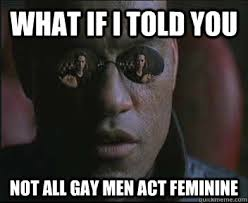 what if i told you not all gay men act feminine morpheus sc