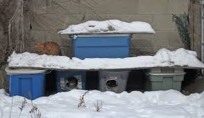 Outdoor Cat Condo Plans by Stray U0026 Feral Cats Animal Alliance Of Canada Outdoor Shelter
