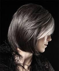 dark hair with grey streaks silver highlights on dark brown hair brown hairs