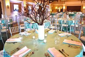 a rustic tiffany blue wedding in jacksonville florida