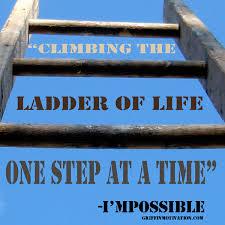Ladder Meme - ladder meme 28 images ladder meme 28 images ladder memes best