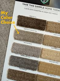 new stainmaster petprotect carpet why we chose it burger