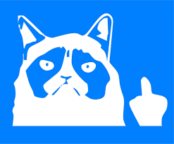 grumpy cat middle finger vinyl decal measures approximately 7 x 5