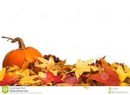 pumpkins border clipart autumn border with pumpkin royalty free stock image image 27278616