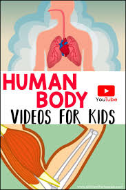 human body videos for kids human body unit human body and unit