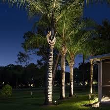 Spotlight Landscape Lighting Volt Boy Spotlight Landscape Lighting Volt Lighting
