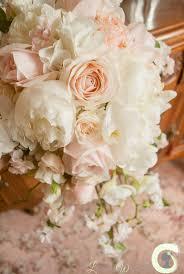 Wedding Flowers Peonies Best 25 Peonies Bouquet Ideas On Pinterest Bouquets Peony Rose