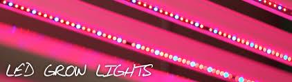 philips led grow light led grow lights header hort americas