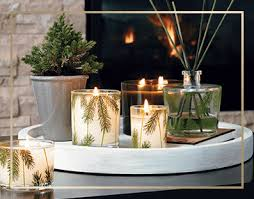 thymes frasier fir frasier fir heritage collection anthony collection