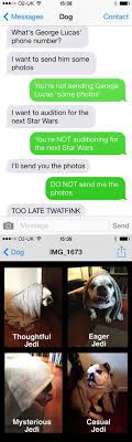 Dog Text Memes - text from dog home facebook