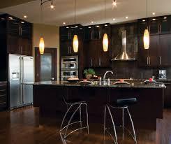 Espresso Cabinets Kitchen Modern Kitchen Cabinets In Espresso Finish Kitchen Craft