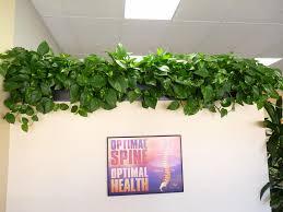 pictures for emerald coast plantscapes interior plant service in