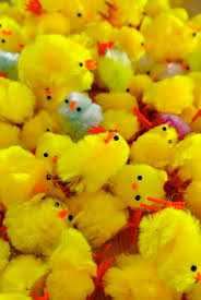 chenille easter a cheep chic easter chic hq