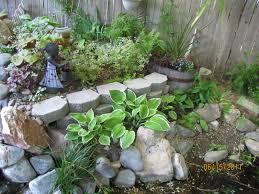 garden desert landscaping backyard ideas simple design small