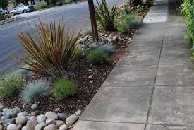 Sidewalk Garden Ideas Several Great Ideas For Sidewalk Landscaping The Hell