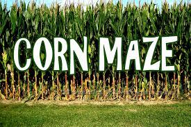 twin oaks farms id twin halloween land corn maze