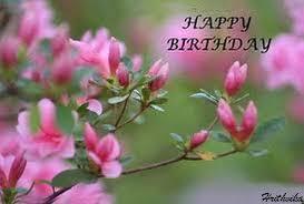 a jasmine birthday wish free flowers ecards greeting cards 123