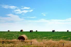 Kansas landscapes images Kansas landscape i love hay against the blue skies almost flickr jpg