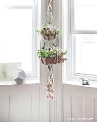diy hanging succulent garden u2013 design sponge