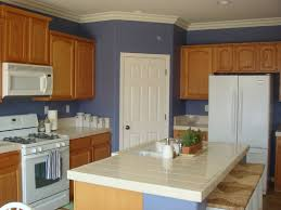 Painted Blue Kitchen Cabinets Blue Kitchen Paint Color Ideas Home Decor Gallery