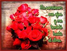 bonitas de rosas rojas con frases de amor imagenes de amor facebook imagenes bonitas de rosas con frases de amor archivos imagenes de rosa