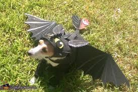 Toothless Dragon Halloween Costume Toothless Dragon Dog Costume Photo 2 2