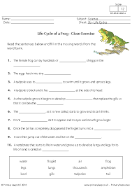 activity life cycle of a frog