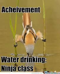 Meme Bird - thirsty bird by phasmaridley meme center