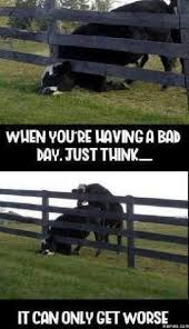 Having A Bad Day Meme - when you are having a bad day