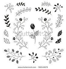flower leaves ornaments set stock vector 568146679