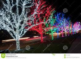 long branch tree lighting christmas tree lights stock photo image of long exposure 40019280