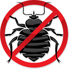 Killing Bed Bugs In Clothes Bed Bug Guide Experts On Bed Bugs And Bed Bug Extermination