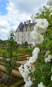 chateaux and wine around villandry chateau de villandry loire valley garden tours