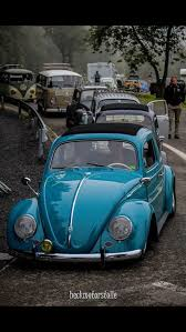 1487 best vw images on pinterest vw bugs volkswagen beetles and car