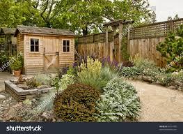 beautifully landscaped backyard small wooden shed stock photo