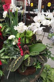 creating a holiday centerpiece using fresh cut or artificial