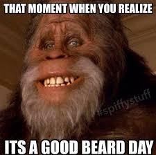 Funny Beard Memes - 59 best nothing but beards images on pinterest beards beard