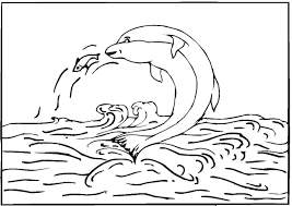 printable coloring pages dolphins free printable dolphin coloring