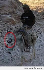 Funny Donkey Memes - bmw donkey by zetron x meme center