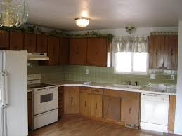 Best Kitchen Cabinets On A Budget 100 Cheap Kitchen Remodel Ideas Before And After Kitchen