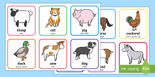 farm animals matching cards farm animals display poster