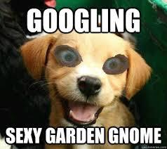 Sexy Dog Meme - googling sexy garden gnome pervy meme quickmeme