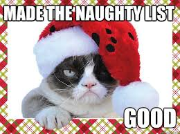 Grumpy Cat Memes Christmas - made the naughty list good a grumpy cat christmas cats