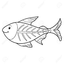 x ray fish coloring page funycoloring