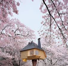 Tree Houses Around The World Beautiful Treehouses From Around The World Photo Gallery Video