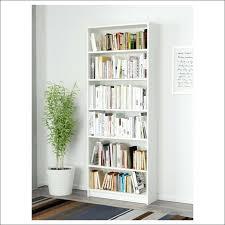 Bookcase Plans With Doors Corner Bookcase With Doors Hercegnovi2021 Me