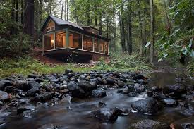 forest house take a look what s inside this dreamy forest house i m jealous